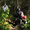 Moss Lake Motorcycle Trail. Some Nice single track.