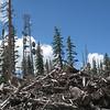 10.500 feet (Dixie NF)