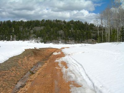 Next I headed to the North Rim of the Grand Canyon. The road was closed, so I tried a few different dirt roads. Too much snow still, about 3-4 miles from the rim. Bad luck.