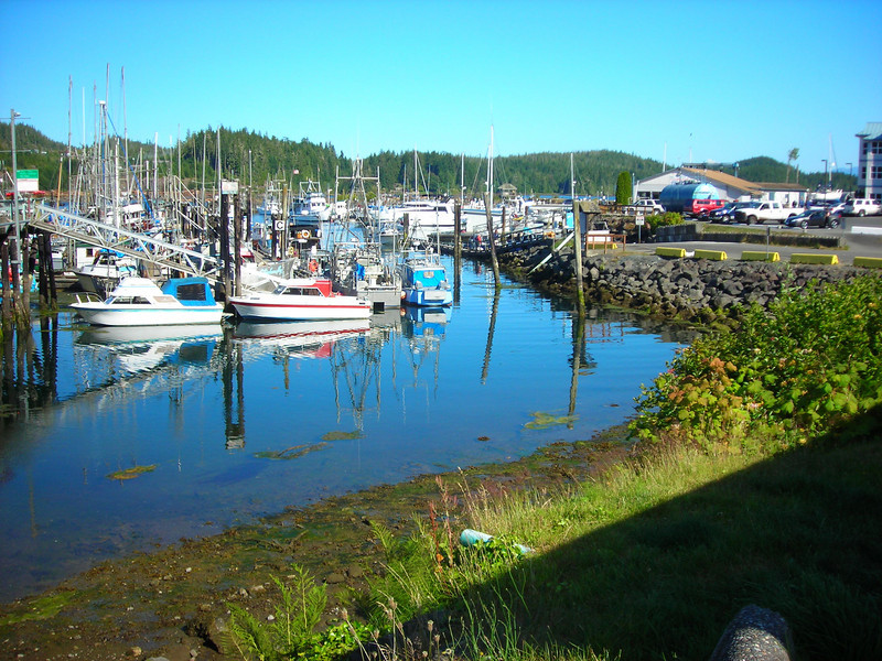 Municipal marina in Port Hardy jammed with both commercial and pleasure boats