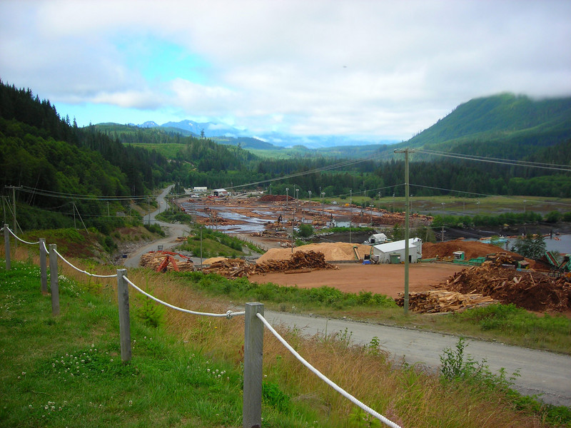 The Beaver Cove log sort and the Nimpkish Valley beyond