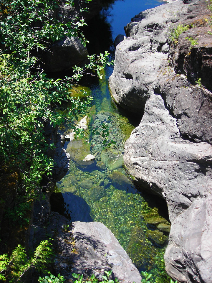 Below the bridge pools reflect the vegetation above
