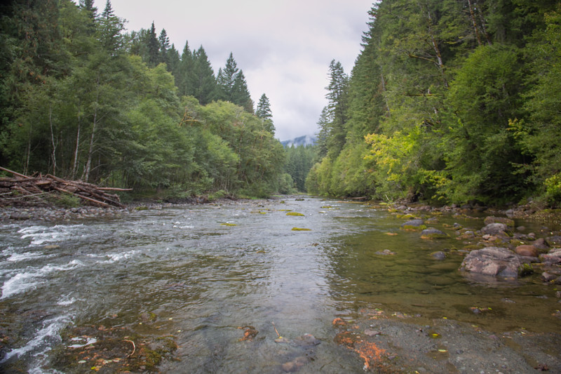 The Lewis River below the falls