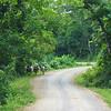 Carretera Waslala - Siuna
