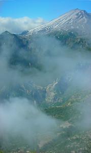 20110806 E Flank Mt St Helens