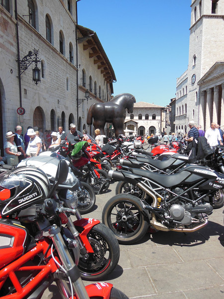 """The """"horse"""", watching over the bikes"""