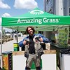 matttys finds some amazing grass