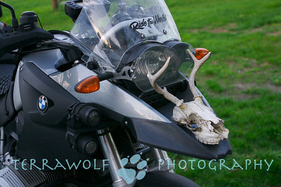 Ingvar's Skull on my R1200GS.... Yarrr!