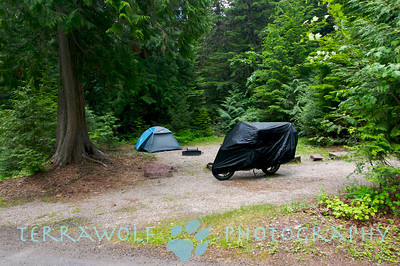 My bearproof campsite at Avalanche Campground, Glacier National Park