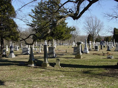 Wide View Of Cemetery