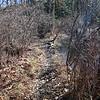 The dry way round the beaver dam.