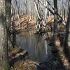 The wet way round the beaver dam.