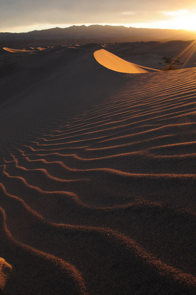 I worked my little sand dune hard as the light came in.
