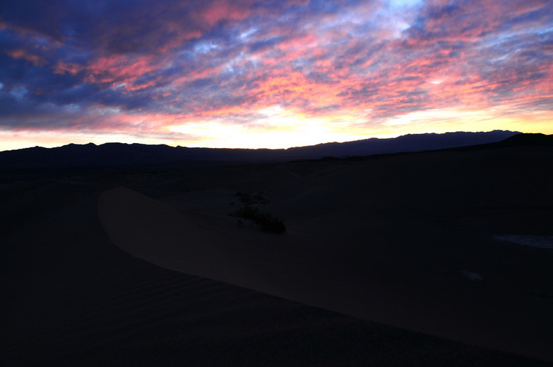 I went out to the dunes at O-darkthirty on the second day to catch the sunrise.