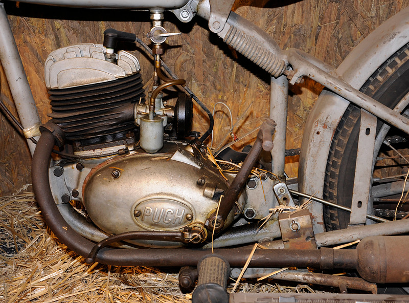 Puch in the Barn