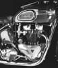 1953 Triumph  500