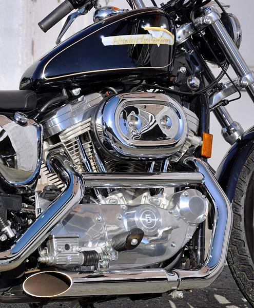 Blaine WA, Harley Davidson