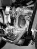 1964 Ducati 250 cc Scrambler