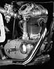 1965 Ducati 350