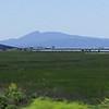 Mount Tamalpais in the distance