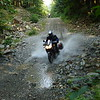 Roger & his DL1000 ripping through the creek and making a big splash.