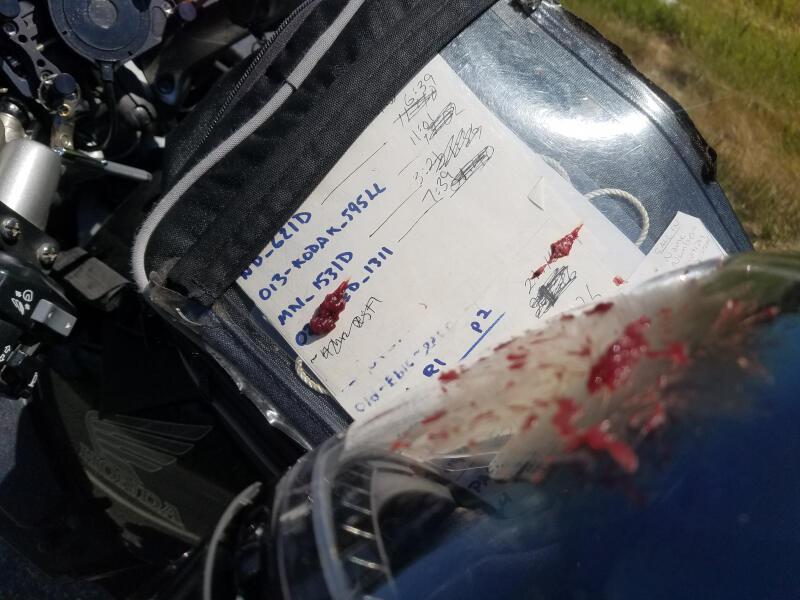 splatter on tankbag and face shield