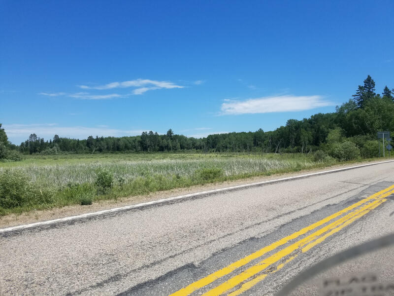 MN route 113 view