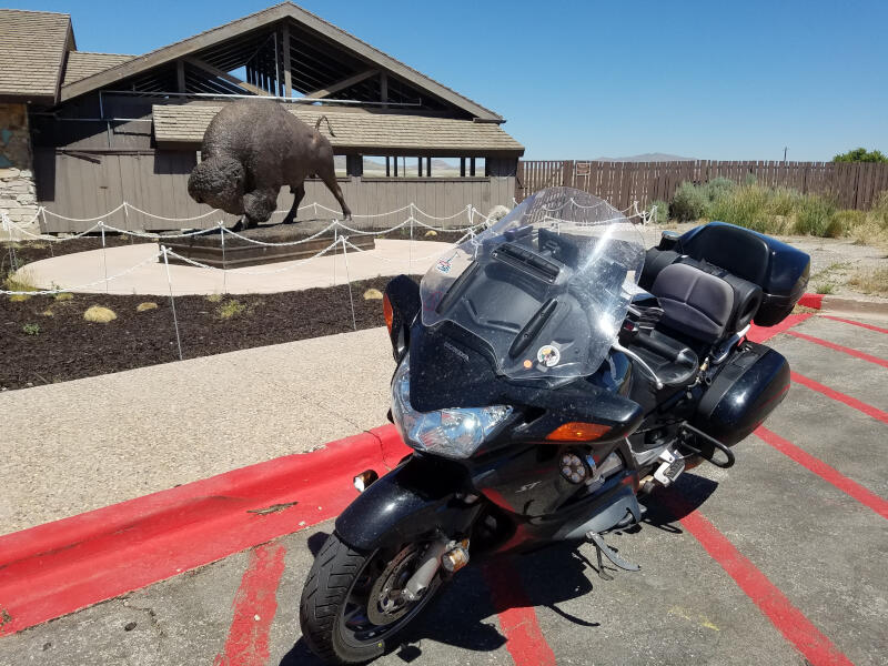 bike with bison sculpture