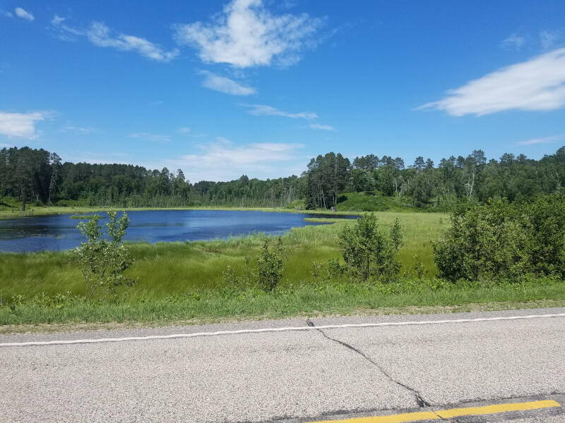 MN route 113 pond view