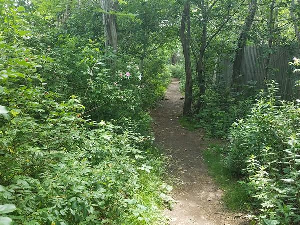 East Point Sanctuary path