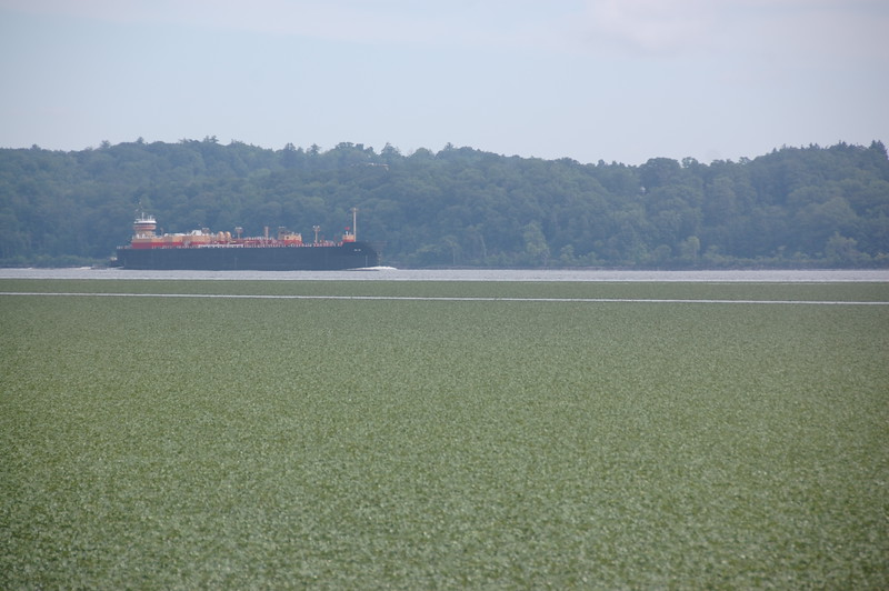 freighter in the Hudson