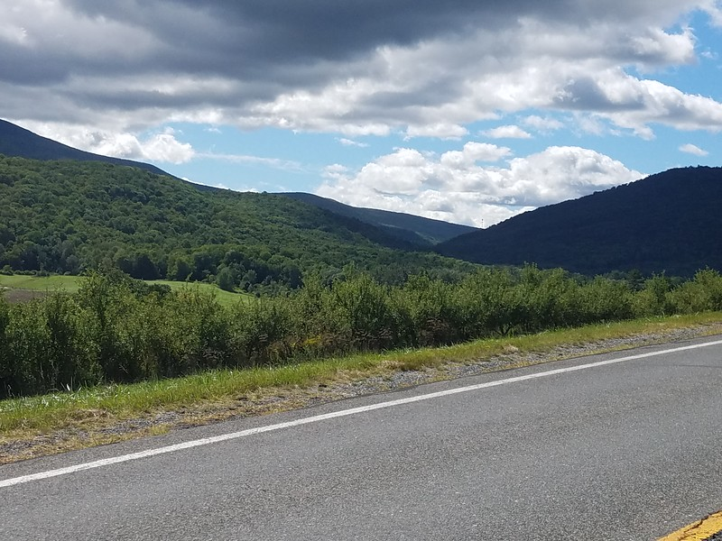 view east over Greylock State Reservation