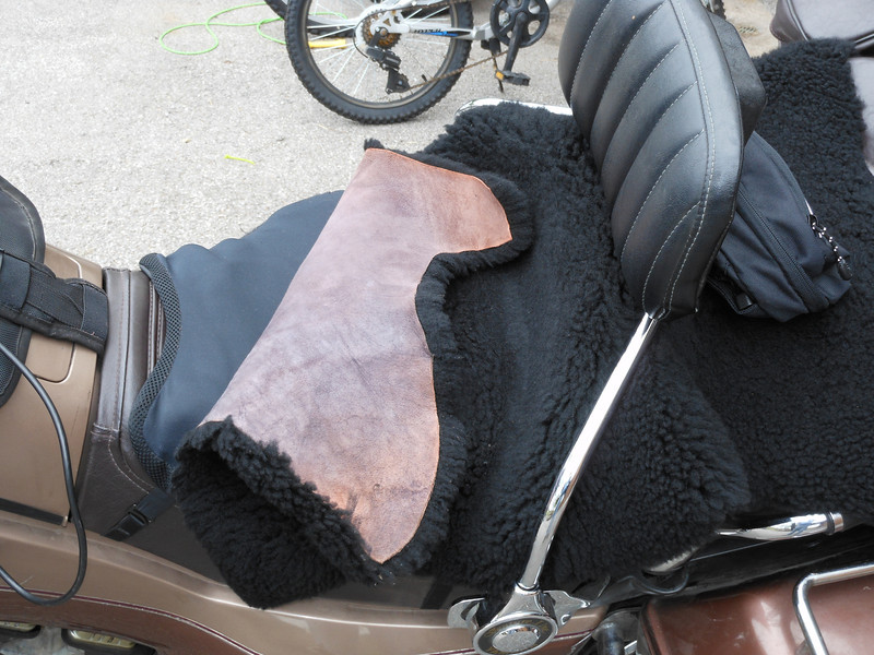 Stock seat with latest Airhawk and sheepskin. I need a Russell Day Long.