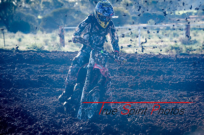 King_of_the_Cross_2015_09 08 2015-45