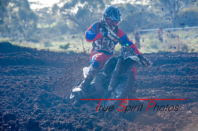 King_of_the_Cross_2015_09 08 2015-40