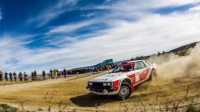 2013 Otago Rally
