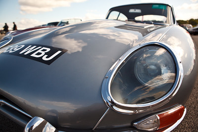 Jaguar E-Type - 50th Anniversary year