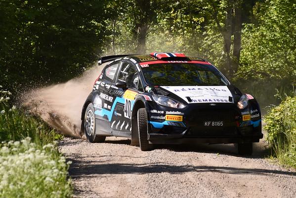 South Swedish Rally 2017 – SS2 – Kråkerum 1