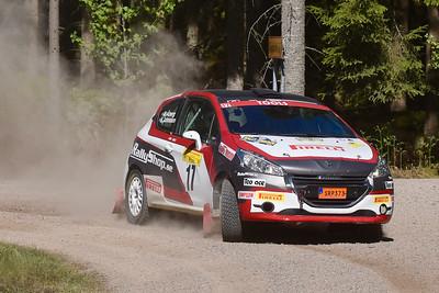 #17 Anders Åberg, Hässleholms MK, Peugeot 208 R2