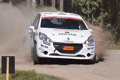 #11 Erik Telehagen, Wäxjö MS, Peugeot 208 R2