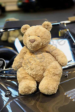 IMG_2940_Bears_NEC2011