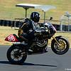 Australasian Superbikes - Rd1 2016 SMSP - Pro-Twins & Nakedbike 19