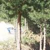 20091004_121411_HA4I7653