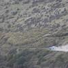 20101114_160059_NZSN4620