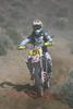 QQ1U8263