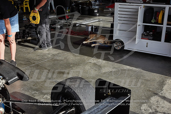 Paddock & Grid Images