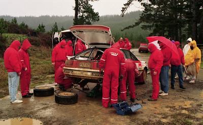 Carlos Sainz, pre-rally testing Maramararua Forest.