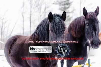 RTH_Mountain-Mud-Run-Meltdown_021118_4582