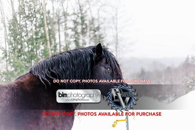 RTH_Mountain-Mud-Run-Meltdown_021118_4600