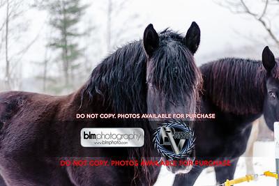 RTH_Mountain-Mud-Run-Meltdown_021118_4587